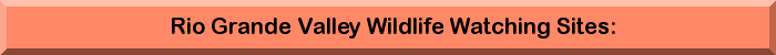 RioGrandeValleyWildWatch.jpg